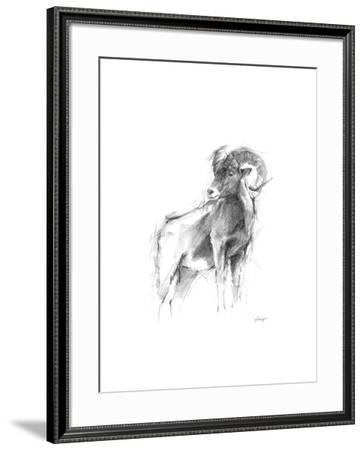 Western Animal Sketch III-Ethan Harper-Framed Limited Edition
