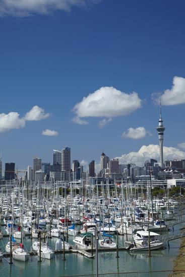 Westhaven Marina, and Sky Tower, Auckland, North Island, New Zealand-David Wall-Photographic Print