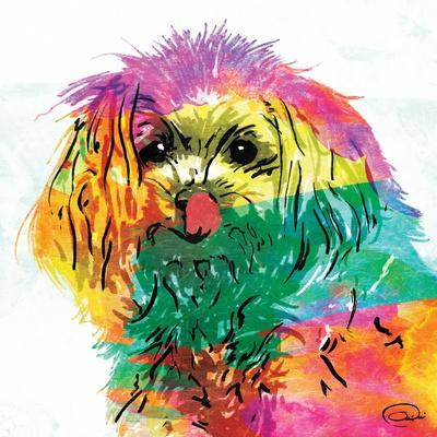 https://imgc.artprintimages.com/img/print/wet-nose-rainbow_u-l-q1bqxbq0.jpg?p=0