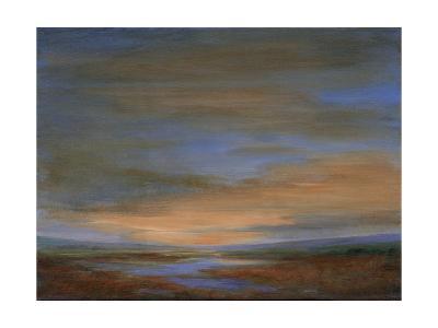 Wetlands Sunset-Sheila Finch-Premium Giclee Print