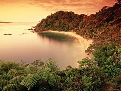 Whale Bay, Northland, New Zealand-Doug Pearson-Photographic Print