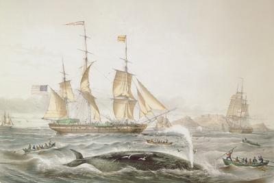 https://imgc.artprintimages.com/img/print/whale-fishing-published-by-e-gambert-and-co-1853_u-l-puqieb0.jpg?p=0