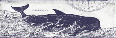Whale on Cream I-Gwendolyn Babbitt-Art Print