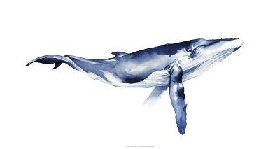 Whale Portrait I-Grace Popp-Giclee Print