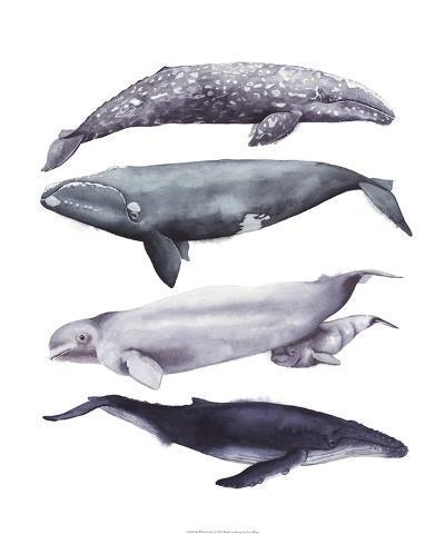 Whale Stack I-Grace Popp-Art Print
