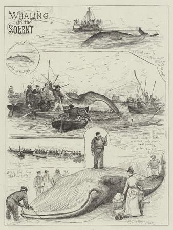 https://imgc.artprintimages.com/img/print/whaling-in-the-solent_u-l-pumwvt0.jpg?p=0