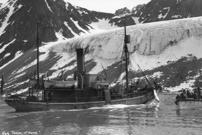 Whaling, Magdalene Bay, Spitzbergen, Norway, 1929--Giclee Print