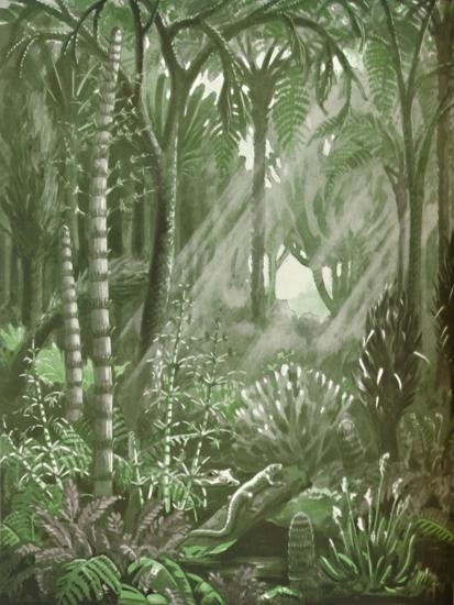 'What the Mighty Coal Forests Were Like', 1935-Unknown-Giclee Print
