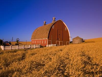 Wheat Field and Barn at Sunrise-Craig Tuttle-Photographic Print