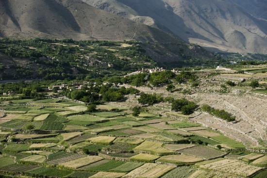 Wheat fields in the Panjshir Valley, Afghanistan, Asia-Alex Treadway-Photographic Print
