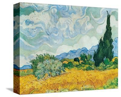 Wheatfield with Cypresses, c.1889-Vincent van Gogh-Stretched Canvas Print
