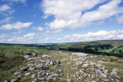 Wheeldale Roman Road, North York Moors National Park, North Yorkshire, England, United Kingdom--Giclee Print