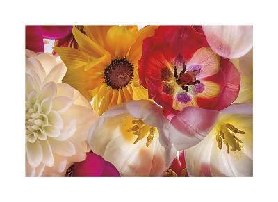 When Flowers Talk-Harold Davis-Giclee Print