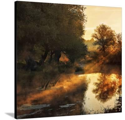 When Nature Paints With Light--Stretched Canvas Print