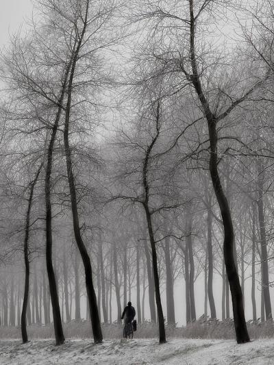 When Winter Knocks on the Door-Yvette Depaepe-Photographic Print