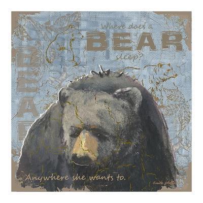 https://imgc.artprintimages.com/img/print/where-does-a-bear-sleep_u-l-f8nc1z0.jpg?p=0