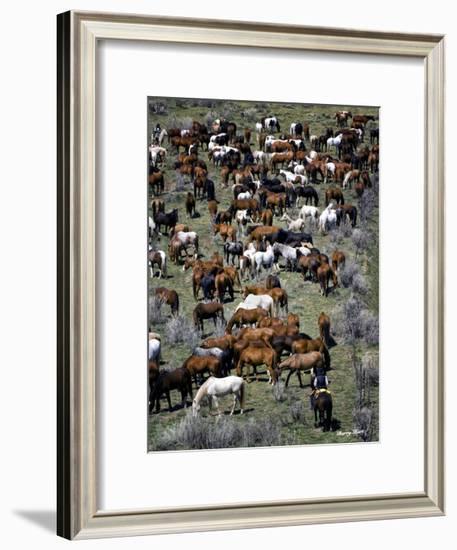 Where's Waldo (color)-Barry Hart-Framed Giclee Print