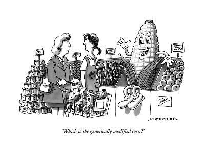 """""""Which is the genetically modified corn?"""" - New Yorker Cartoon--Premium Giclee Print"""