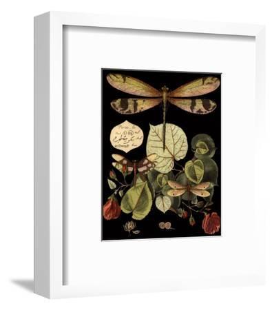 Whimsical Dragonfly on Black II