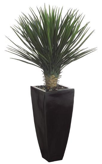 Whipple Yucca Plant - 4.5 ft--Home Accessories