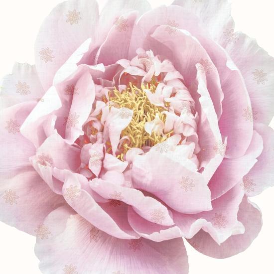 Whisper Floral-Bella Dos Santos-Art Print