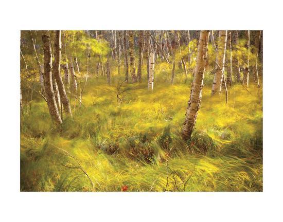 Whispering Grass-Michael Hudson-Art Print