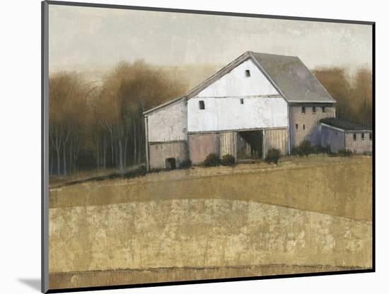 White Barn View I-Tim O'toole-Mounted Art Print