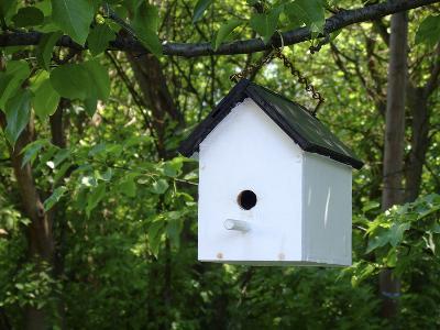 White Birdhouse-Anna Miller-Photographic Print