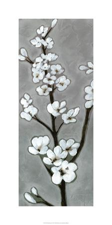 https://imgc.artprintimages.com/img/print/white-blossoms-i_u-l-f5bwd80.jpg?p=0