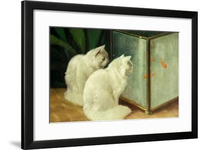 White Cats Watching Goldfish-Arthur Heyer-Framed Giclee Print