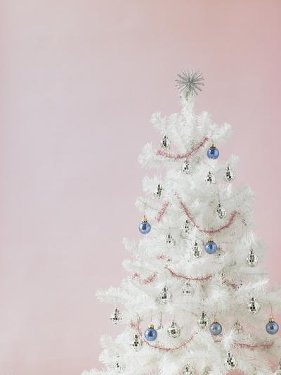 White Christmas Tree-Patrick Norman-Photographic Print
