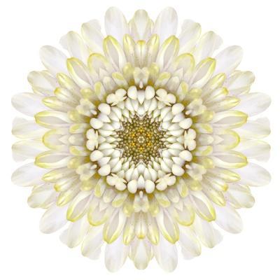 https://imgc.artprintimages.com/img/print/white-chrysathemum-mandala-flower-kaleidoscopic_u-l-pof72x0.jpg?p=0