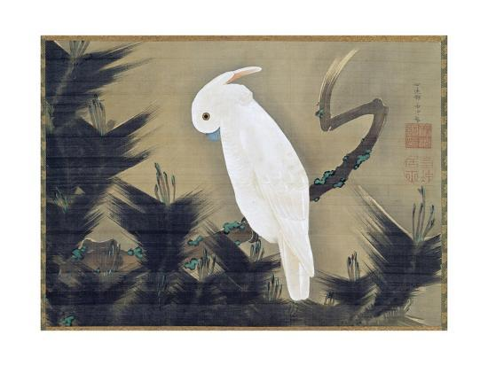 White Cockatoo on a Pine Branch-Ito Jakuchu-Giclee Print