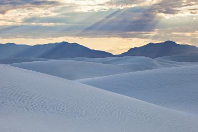 White Dunes with Late Afternoon Sunlight in White Sands National Monument-Derek Von Briesen-Photographic Print