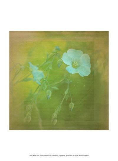 White Flowers VI-Jennifer Jorgensen-Art Print