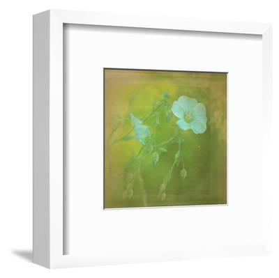 White Flowers VI-Jennifer Jorgensen-Framed Art Print
