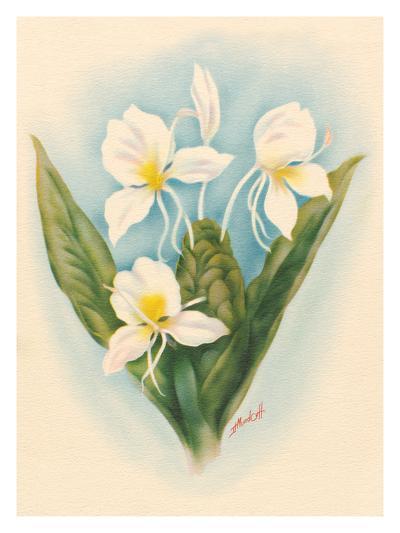 White Ginger-Ted Mundorff-Premium Giclee Print