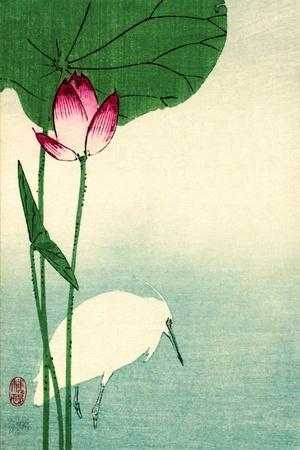 https://imgc.artprintimages.com/img/print/white-heron-with-lotus-in-water-vintage-japanese-woodblock-print_u-l-q1fje6x0.jpg?p=0