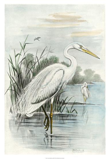White Heron-Unknown-Giclee Print