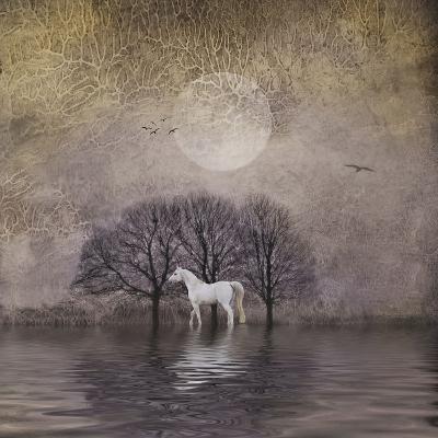 White Horse in Pond-Dawne Polis-Art Print