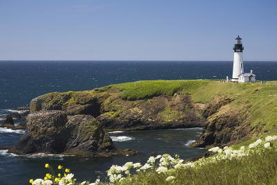 White Lighthouse on the Ocean with Blue Sky and Wildflowers, Newport, Oregon-Design Pics Inc-Photographic Print