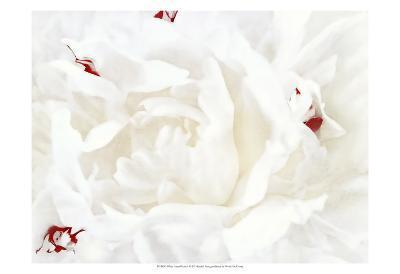 White Linen Peony I-Rachel Perry-Art Print