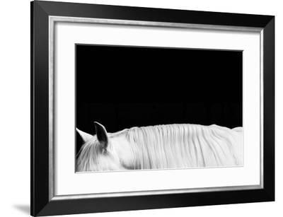 White on Black II-Samantha Carter-Framed Giclee Print