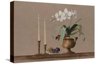 White Orchid Still Life-Wilbur-Stretched Canvas Print