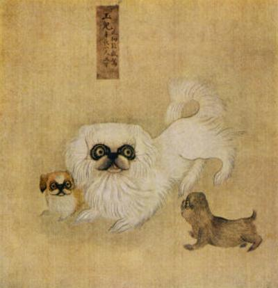 White Pekingese Dog and Puppies as Depicted in an Imperial Dog Book