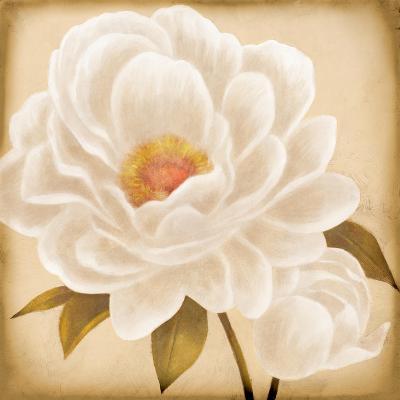 White Peonies I-Vivien Rhyan-Art Print