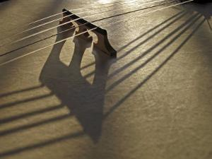 Bridge and Strings Cast Shadows across the Head of a Banjo by White & Petteway