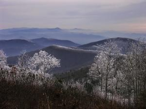 Trees Along High Elevation Mountain Ridges Frosted with Rime Ice by White & Petteway