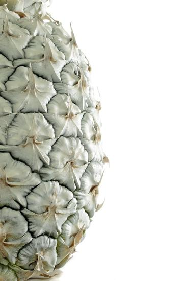 White Pineapple-Neal Grundy-Photographic Print