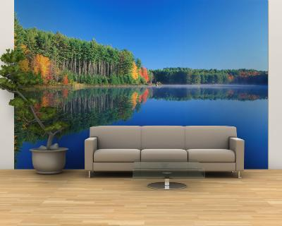 White Pines and Hardwoods, Meadow Lake, New Hampshire, USA-Jerry & Marcy Monkman-Wall Mural – Large